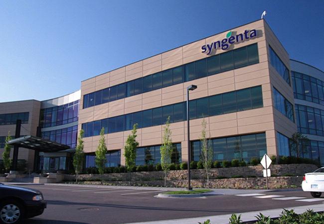 Sygenta Seeds