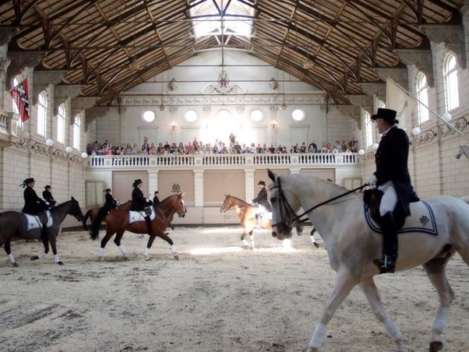 Renovatie De Hollandsche Manege Te Amsterdam